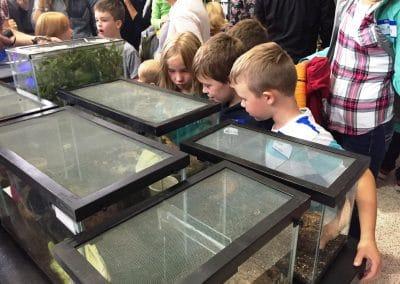 Group of kids looking in a terrarium